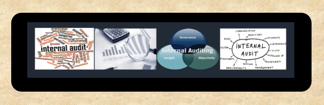 Modules for Internal audit and process audit