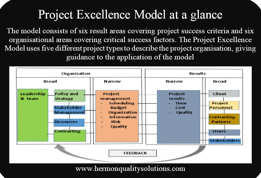 Project excellence model at a glance
